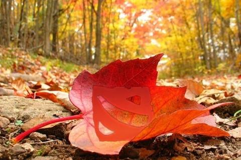 Масштабные итоги осеннего сезона в Дота 2